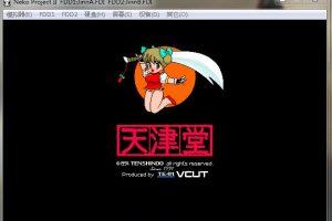 PC98游戏合集 个人精选H游戏 附带PC98模拟器 2GB